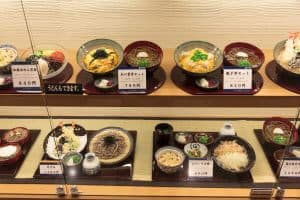 Japanese Food Restaurant Display