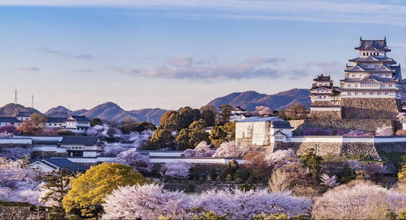 A panoramic shot of a huge Japanese castle standing above trees and other buildings in Japan.