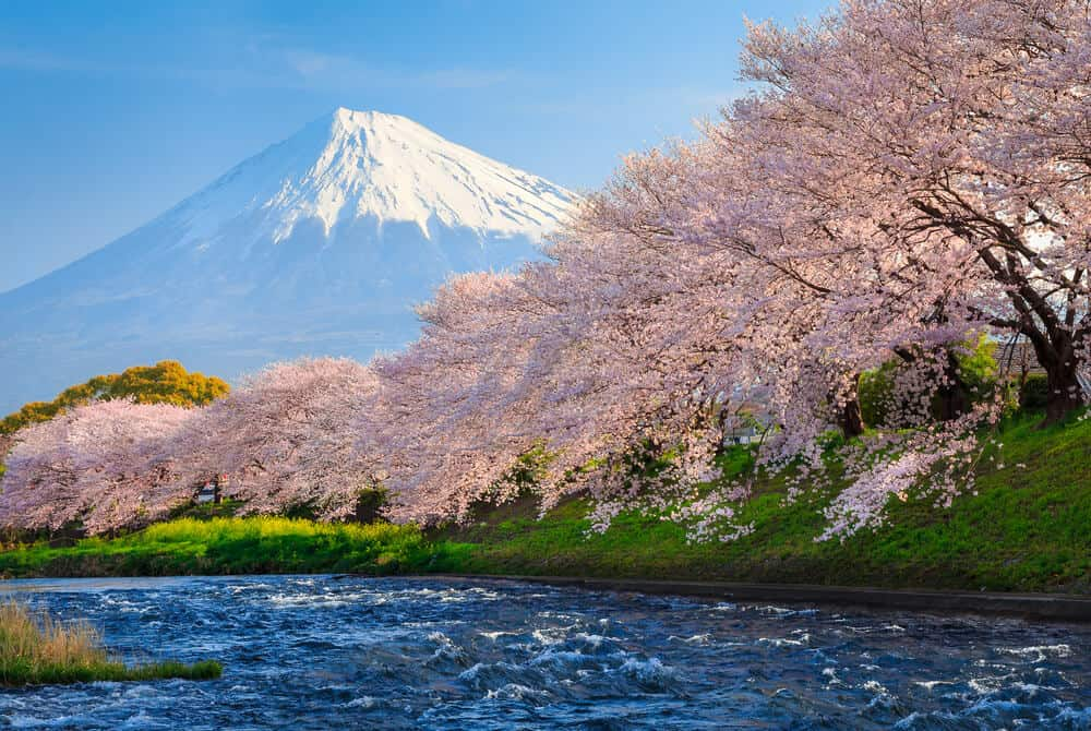 Best Time to Visit Japan - Mt. Fuji