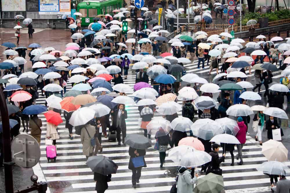 Best Time to Visit Japan - Summer Rainy Season