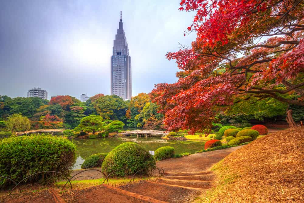 Best Time to Visit Japan - Summer Temperature