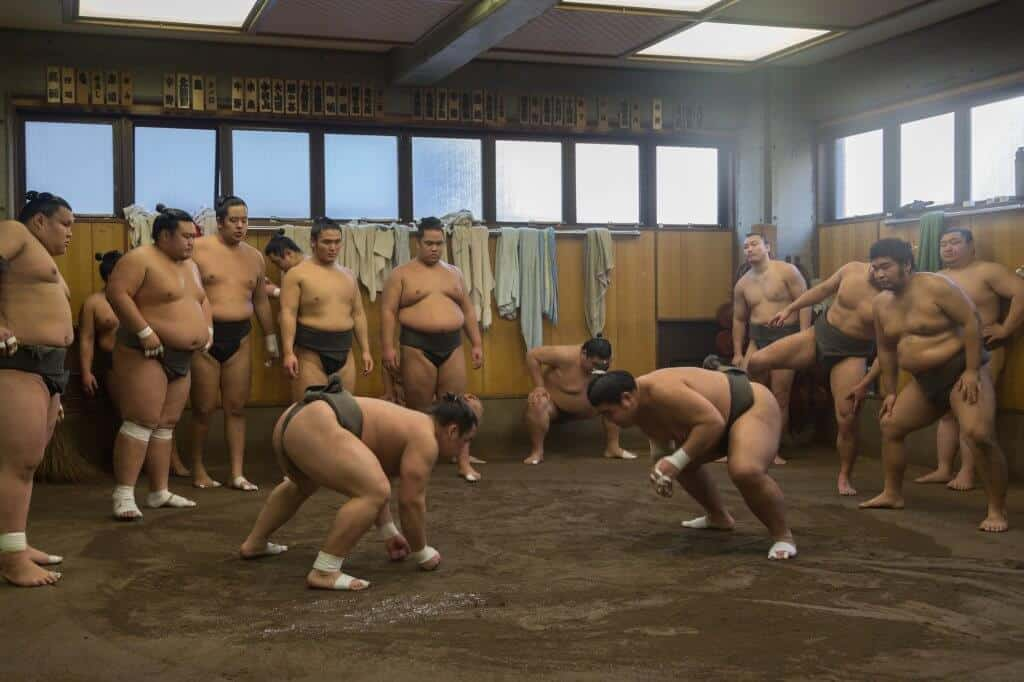 Free Things to do in Tokyo - Sumo Stables