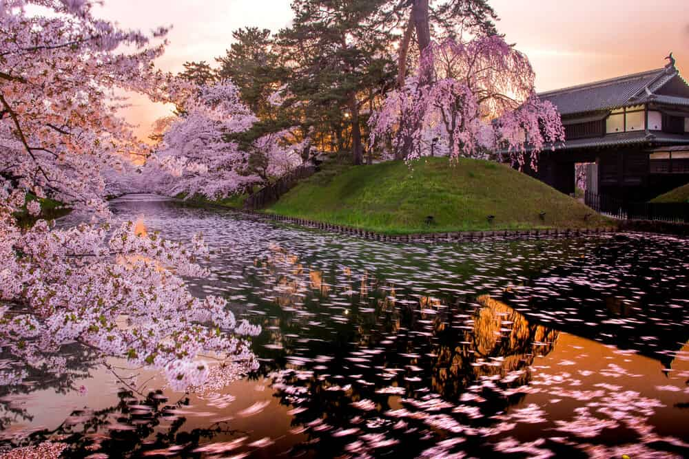 Pros and Cons of Living in Japan Beautiful Japan