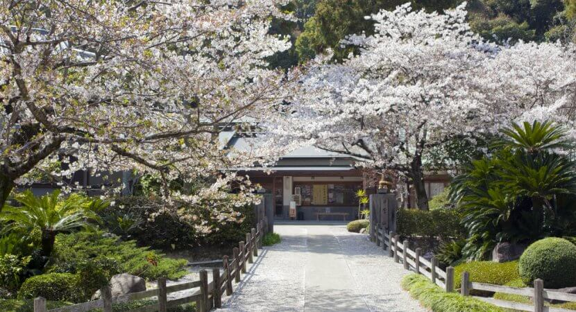 Shikoku Pilgrimage: 88 Temples to Enlightenment - The True ...