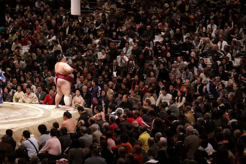 Sumo in Tokyo Seats Near the Ring