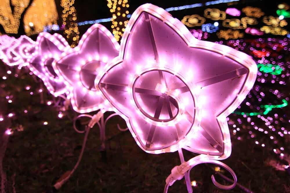 Sagamiko Illumination Flower Light