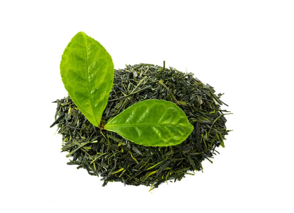 Complete Guide to Japanese Tea Sencha