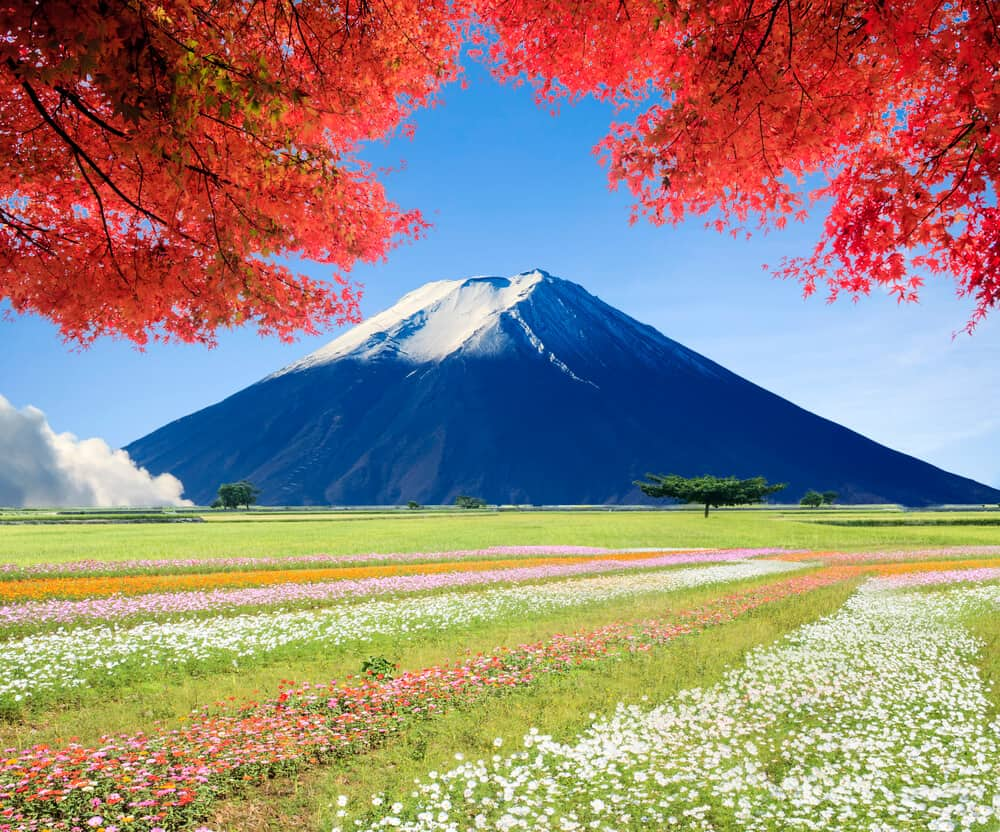 Healthy Japanese Habits - Outdoors