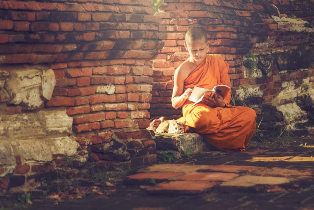 Buddhism Practices - Boy Monk Reading