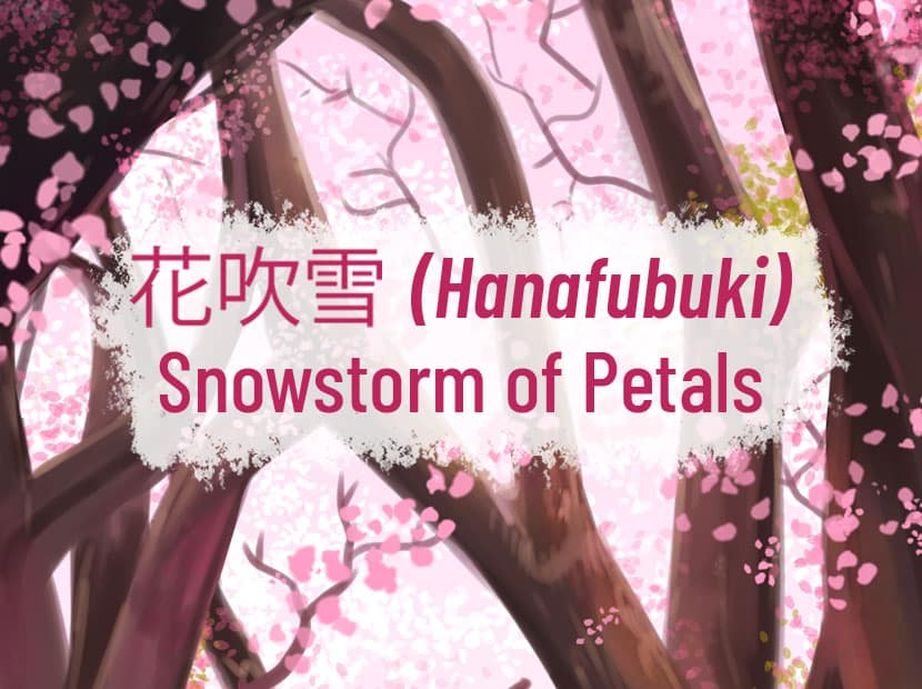"An illustration of cherry blossom trees, with the flower petals falling down. There is Japanese text in the middle, and the English translation which says, ""Hanabufuki Snowstorm of Petals."""