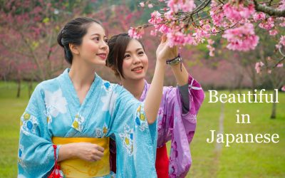 Two young Asian girls dressed in a Japanese kimono (one blue and the other purple) looking at a cherry blossom or plum tree branch with flowers..
