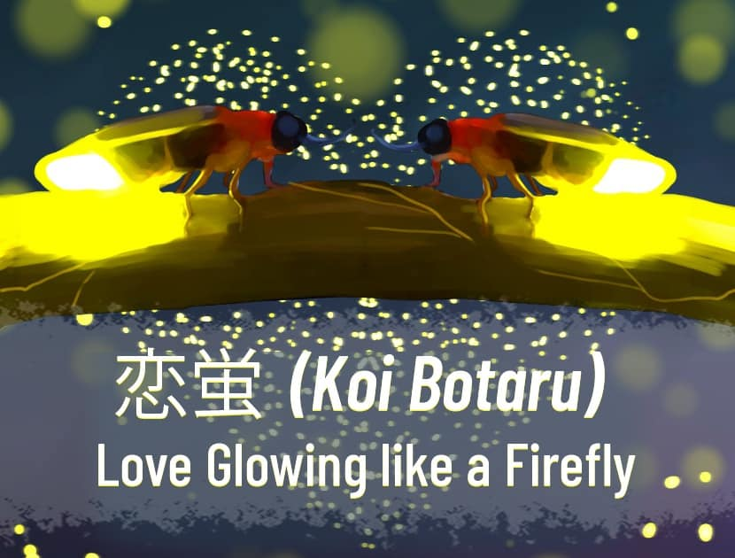 "An illustration of two fireflies on a branch, face to face, with a lot of other fireflies in the background in the air in the shape of a heart. There is Japanese text in the middle with the English translation that says, ""Koi Botaru - Love Growing Like a Firefly."""