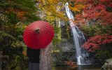 Minoo Park Waterfall in Osaka, Japan. A couple is standing in front of the waterfall under a red, Japanese style umbrella.