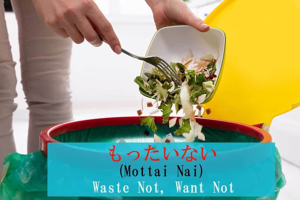 "The hands of a woman throwing a remains of a salad from a white bowl into a red/green trash can. Japanese and English are displayed for the word ""Mottai-nai - Wasteful"" on the bottom of the image."