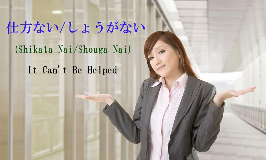 "A young, Asian woman dressed in a grey business suit shrugging her shoulders with both her hands up. The text in Japanese and English is for the word ""Shikata-Nai - Can't-Be-Helped"" written at the top left hand side of the image."