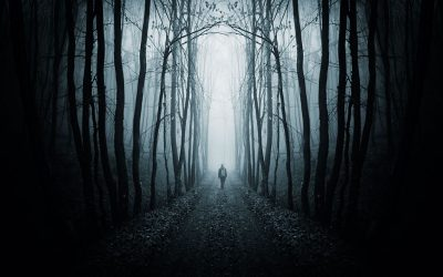A man wearing a backpack walking down an eerie, dark tunnel of trees. Everything in the picture is black and white, which makes it feel creepy.