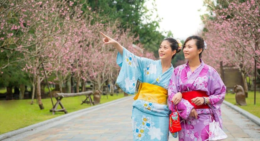 Two young, Asian women dressed in colorful (one in blue the other in purple) Japanese yukata outfits. They are walking arm-in-arm, on a path with sakura trees on both sides. The woman on the left is pointing at something in the distance.